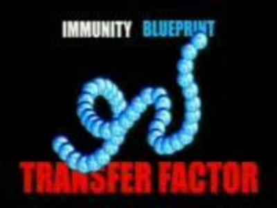 Transfer faktor